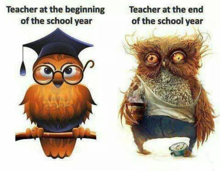 sowa teacher